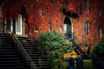 Mission photographique: les couleurs à Montréal