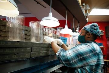 États-Unis Les créations d'emplois réduites de moitié en novembre)