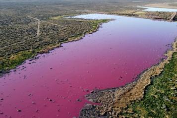Une lagune vire au rose en Patagonie, polluée par des produits chimiques)