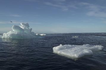 Le microplastique, de nos lavages à l'océan Arctique)