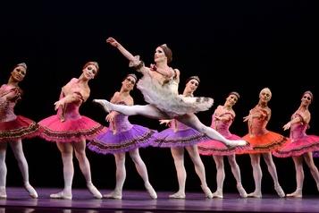 Les danseurs des Ballets de Monte-Carlo testés en vue d'une reprise)