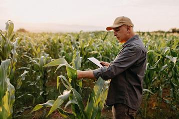 Desjardins : Balado sur l'entrepreneuriat Cultiver la réussite de notre industrie agricole et agroalimentaire)