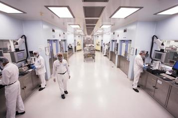 Une étude montréalaise teste l'hydroxychloroquine sur des volontaires
