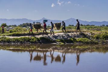 La Presse en Haïti Aux premières loges du dérèglement climatique)
