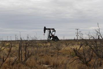 Les puissances pétrolières proches d'un accord pour freiner la débâcle des prix
