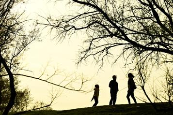 Réforme du droit de la famille: vos commentaires)