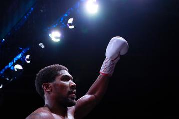 Boxe: Anthony Joshua prend sa revanche sur Andy Ruiz
