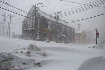 Terre-Neuve: l'homme disparu pendant le blizzard retrouvé mort