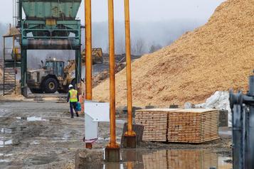 GNL Québec investit dans larecherche surlesrésidus forestiers