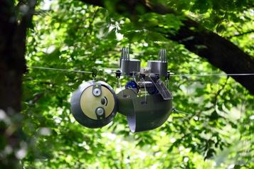 Un robot paresseux)
