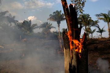 Des feux en Amazonie déclenchent une tempête anti-Bolsonaro