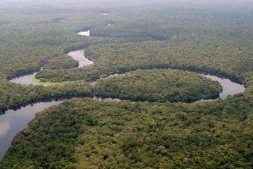 République démocratique du Congo Un grand parc africain retiré de la liste du patrimoine mondial en péril)