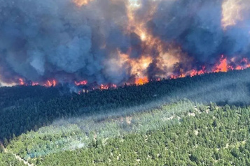 Incendies de forêt Des experts s'inquiètent des effets sur la santé)