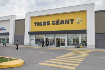 Tigre Géant veut ajouter une quarantaine de magasins au pays)