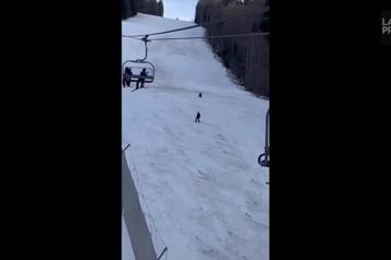 Roumanie Un skieur poursuivi par un ours)