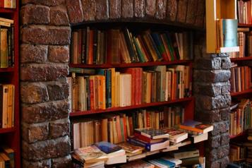 Bibliothèque dans une cheminée: une brûlante envie de lire)