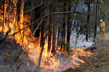 Des pompiers québécois appelés en renfort enAustralie