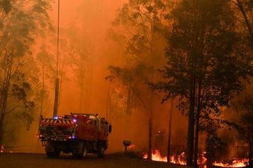 Australie: des incendies fusionnent en un mégabrasier au nord de Sydney