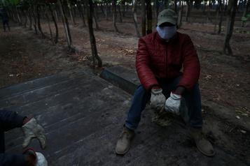 COVID-19: près de la moitié du monde en confinement, l'épidémie s'étend