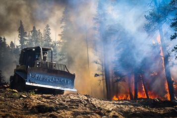 L'incendie de forêt du Colorado a brûlé des maisons et plus de 830km carrés de forêt )
