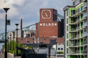 Molson Coors affiche sa plus importante hausse de revenus en 10 ans)