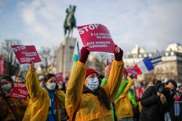 Des milliers de manifestants rassemblés à Paris contre l'avortement)