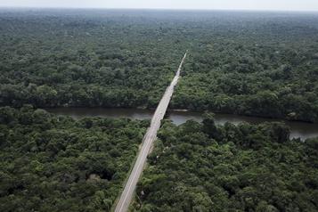 Premier cas de COVID-19 chez des Amérindiens au Brésil