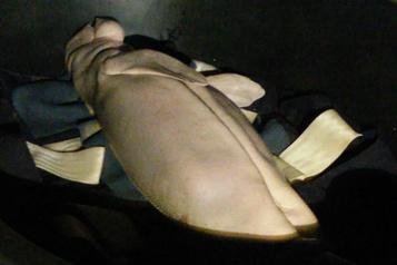 Thaïlande: mort du bébé-vedette dugong Mariam, victime des déchets plastiques