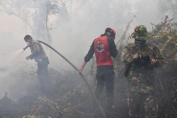 Indonésie: près de 200 arrestations pour avoir déclenché des incendies
