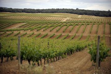 Quelle ville européenne a été nommée capitale européenne du vin en 2020?