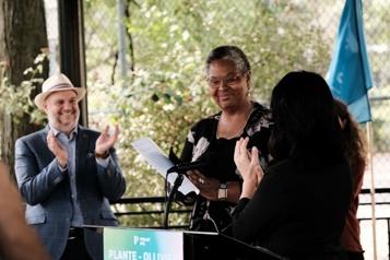 Dominique Ollivier candidate pour Projet Montréal )