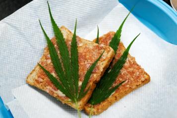 Thaïlande Le cannabis arrive dans les assiettes)