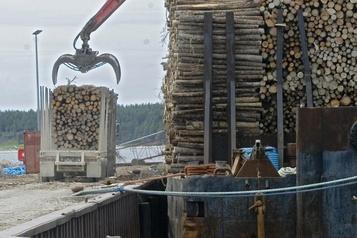 L'industrie forestière condamnée au déclin conclut l'IRIS, l'industrie riposte)