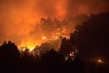 Violent incendie aux îles Canaries, 5000personnes évacuées