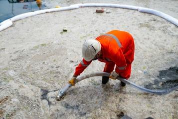 Turquie Opération pour nettoyer la « morve de mer » qui envahit les côtes)