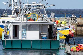 Les pêcheurs de homard craignent une saison catastrophique