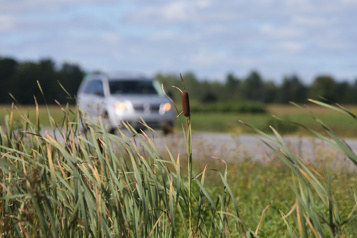 Lanaudière Sortie de route mortelle dans un champ en bordure de la route158)