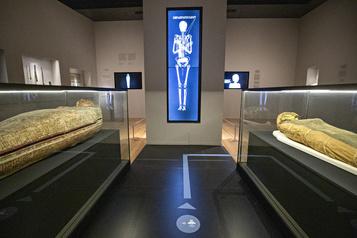 Rentrée culturelle Les musées, ces rescapés de la COVID-19)
