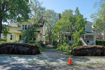 Dorian: Trudeau à Halifax pour constater les dégâts
