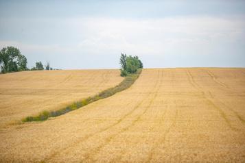 Québec appuie undézonage agricole dans Lanaudière