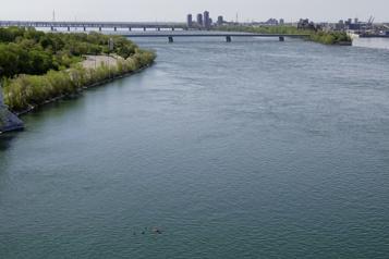 Un faible niveau d'eau observé dans le fleuve Saint-Laurent)