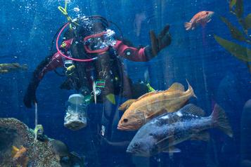 L'Aquarium de Québec fermé