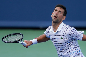 Novak Djokovic éliminé en demi-finales à Cincinnati