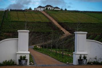 À boire: le renouveau sud-africain débarque ici
