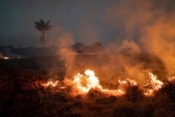 L'ONU appelle à protéger la forêt amazonienne