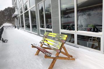 Planète bleue, idées vertes: skis de salon