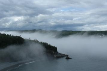 Les voyageurs canadiens pourront bientôt retourner à Terre-Neuve-et-Labrador)