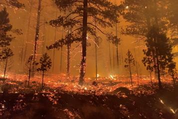 Ouest américain Le Tamarack Fire continue de s'étendre)