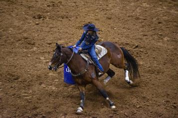 Comment se sentent les chevaux au rodéo?)