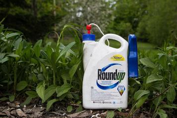 Herbicide Roundup: trois autres demandes d'actions collectives au Canada